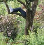 Genieten in je tuin
