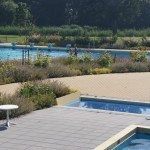 zwembad waterdam beplanting achteraf
